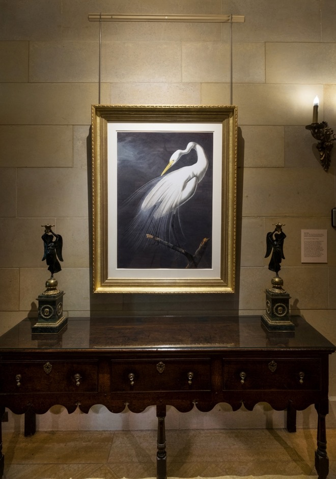Audubon Exhibition Installation Photo