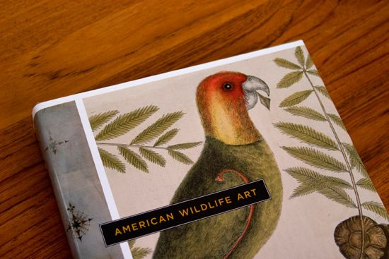 American Wildlife Art Book
