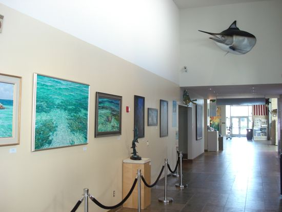 Art of the Dive Exhibition Photo