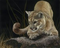 FELINE FINE II featured artwork