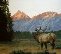 America's Parks I featured artwork